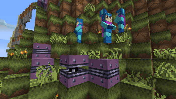 New in 1.9: Sentry Shells and Copy Robots! They even walk around trying to recruit for Wily's army.