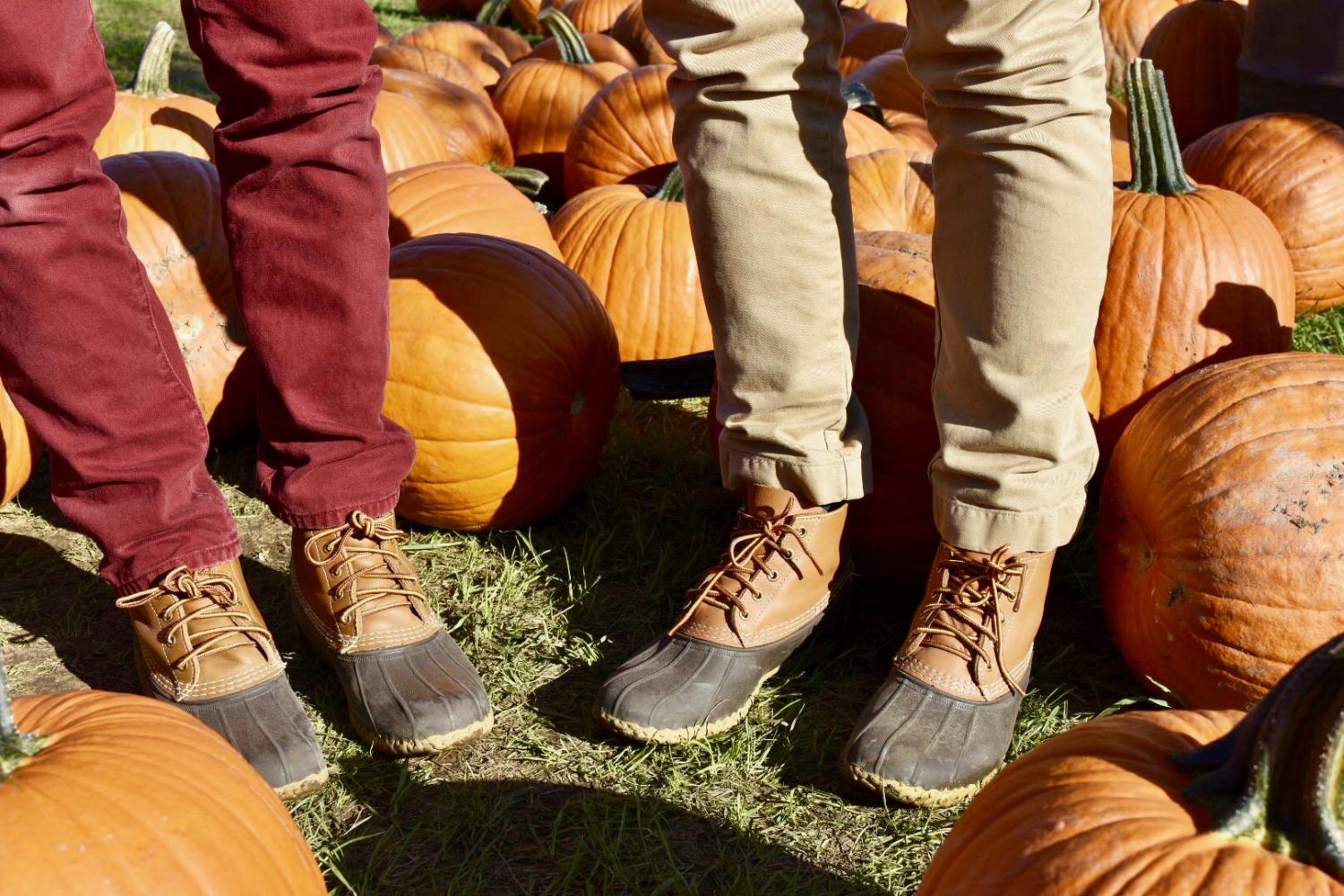 As the hot summer comes to a close; the coming of autumn brings the return of the chilly weather. That means the return of pants, sweaters, jeans, and boots and fall traditions such as Halloween and visits to the pumpkin farm.