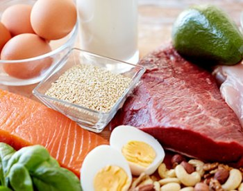 Sources of Protein hCG Diet