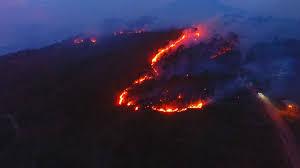 Fallecen dos bomberos atrapados en incendio forestal de La Montañita