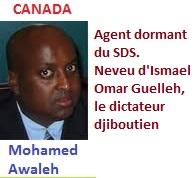 M. Awaleh -Agents-Dormants1