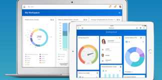 Workday Screens