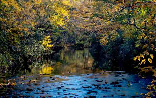 101415_linville_river_SS