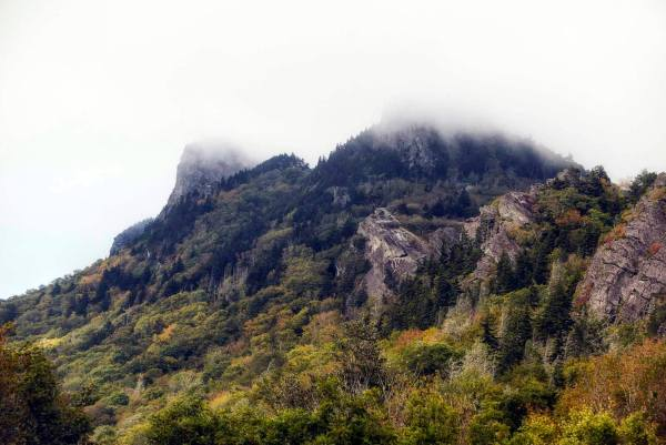 Shrouded in morning fog, Grandfather Mountain's iconic peaks begin to show the signs of autumn. According to Jesse Pope, executive director of the Grandfather Mountain Stewardship Foundation, fall color is still slowly progressing and not yet peak at higher elevations. However, increasingly colorful maples, sourwoods, azaleas, huckleberries, hobblebush and yellow birches point toward peak color just around the corner, with each day bringing a visible change. Photo by Skip Sickler | Grandfather Mountain Stewardship Foundation