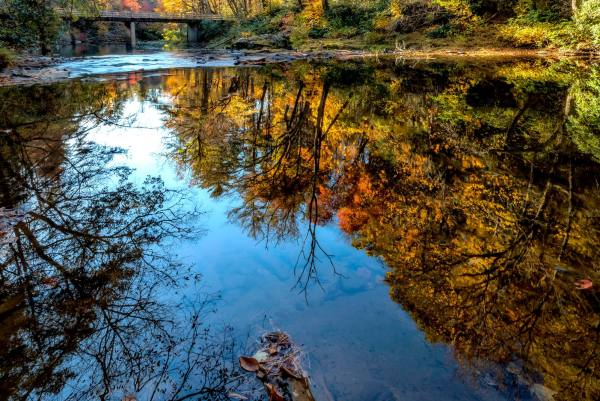 A brilliant autumn sky joins vibrant fall color in a reflection on the Linville River. While much of the High Country's fall foliage is past peak, spot color still abounds, and elevations lower than 3,000 feet continue to change. Fortunately, Grandfather Mountain offers a unique vantage point to watch that change progress through the valleys below and beyond. Photo by Skip Sickler | Grandfather Mountain Stewardship Foundation