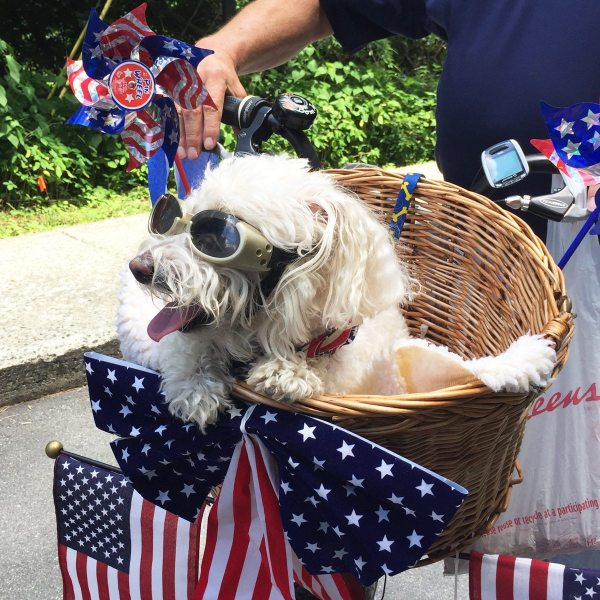 2015-July-4th-Parade-Beauregarde