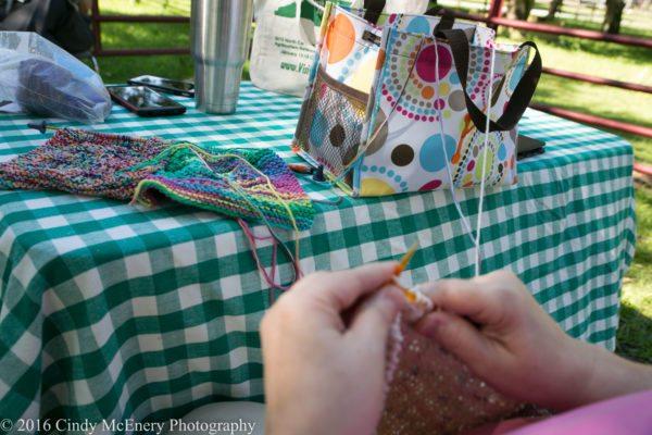 2016 August Apple Hill Farm Knitting-0324