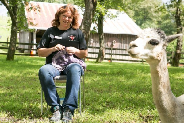 2016-august-apple-hill-farm-knitting-0421-600x400