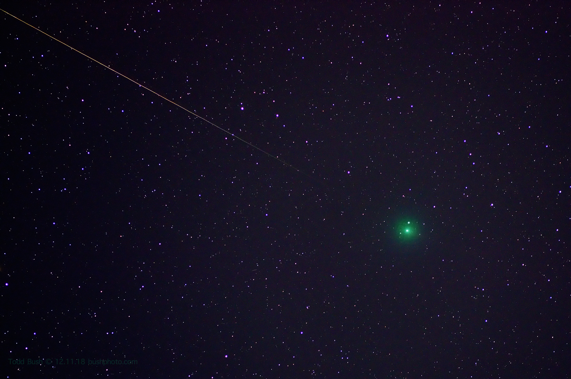 Christmas Comet.On A Clear Night Look To The Sky To See The Christmas