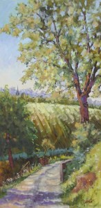 Connie Winters - Hill View in Tuscany 48x24