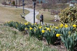 With flowers starting to bloom in Durham Park at Appalachian State University, it is starting to look like springtime in the High Country. Photo by Ken Ketchie