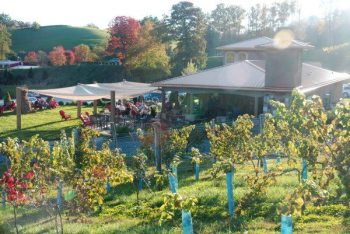 Linville Falls Winery. Photo by Ken Ketchie.