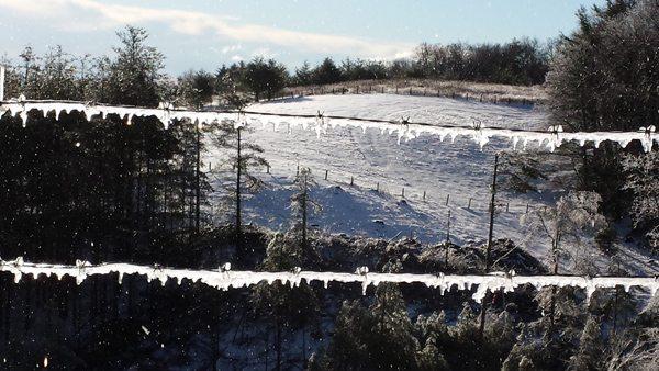 Ice Jan 16