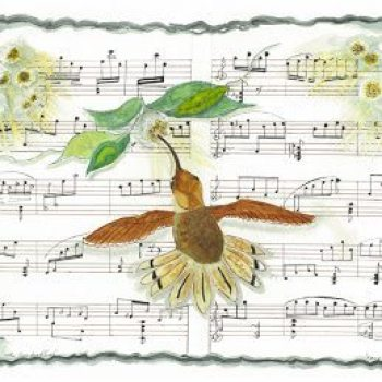 Joy Braverman - Natures Symphony-1-The Conductor