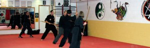 Photo courtesy of Blue Ridge Kung Fu website