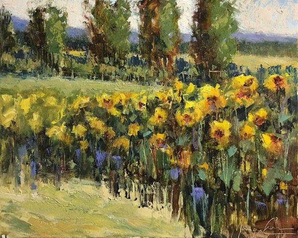 sunflower-oil-16x20