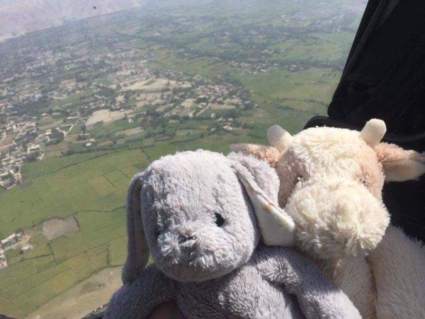 Baby Cow and stuffed companion Bun Bun take flight.