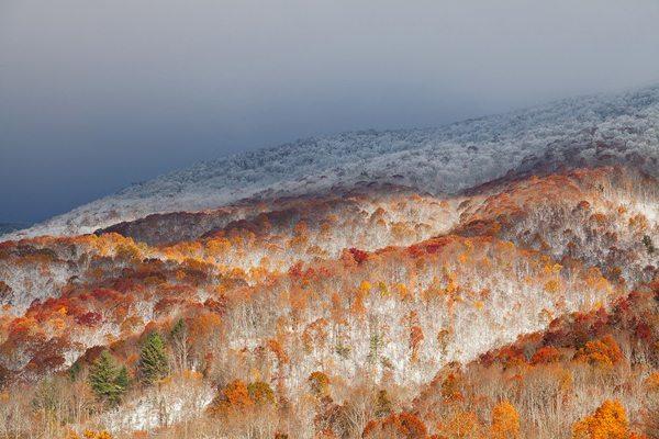 """""""Merging Seasons"""" by Daniel Burleson"""