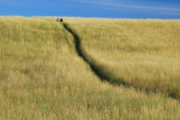 """""""Coming Down 'The Lump' Hill"""" by Dianne Sherrill"""