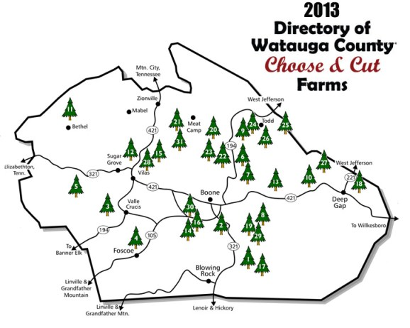 Click here to learn more about wholesale trees and choose-and-cut operations in Watauga County. http://www.watauganurserymen.org/wholesale.htm