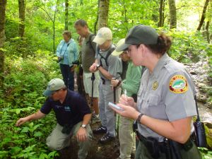 Grandfather Mountain Stewardship Foundation Director of Education Jesse Pope leads participants on a Wildflower Walk.  This year, the hike will take place Saturday, May 18 at 9 am during Grandfather Mountain's Naturalist Weekend.  Photo by Kristen Pickeral