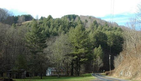 A stretch of road on the new Scenic Byway in Ashe County.