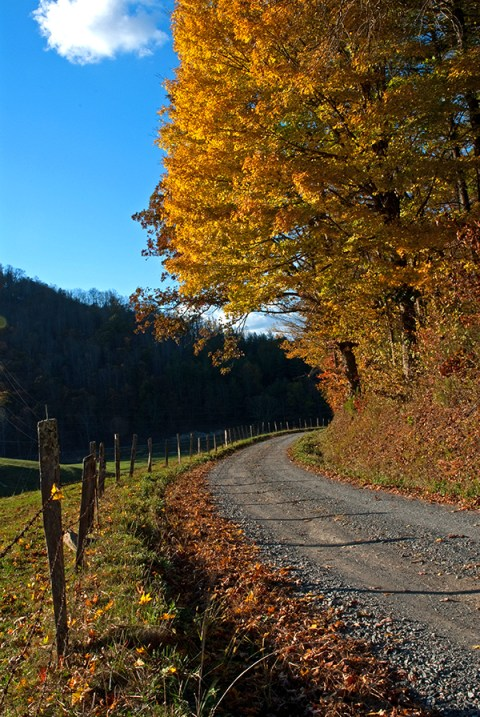 willis_fall_colors_valle_crucis_063