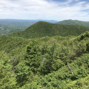 Transfer from Blue Ridge Conservancy to NC Wildlife Resources Commission Expands Three Top Game Lands to 3,100 Acres