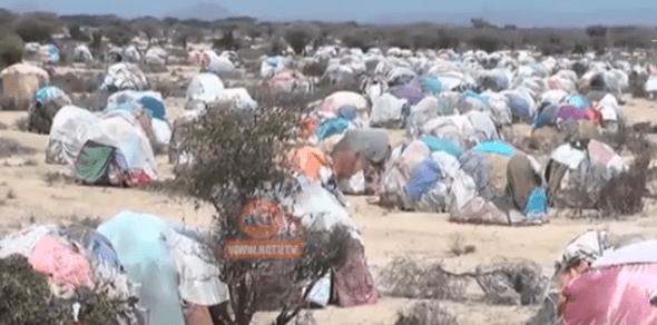 Qaylo-dhaan Ka Soo Yeedhay Gobolka Saaxil Ee Somaliland