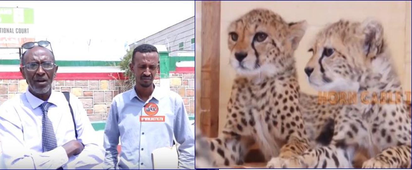 Wasaaradda Deegaanka Somaliland Oo Dacwad Laga Gudbiyey