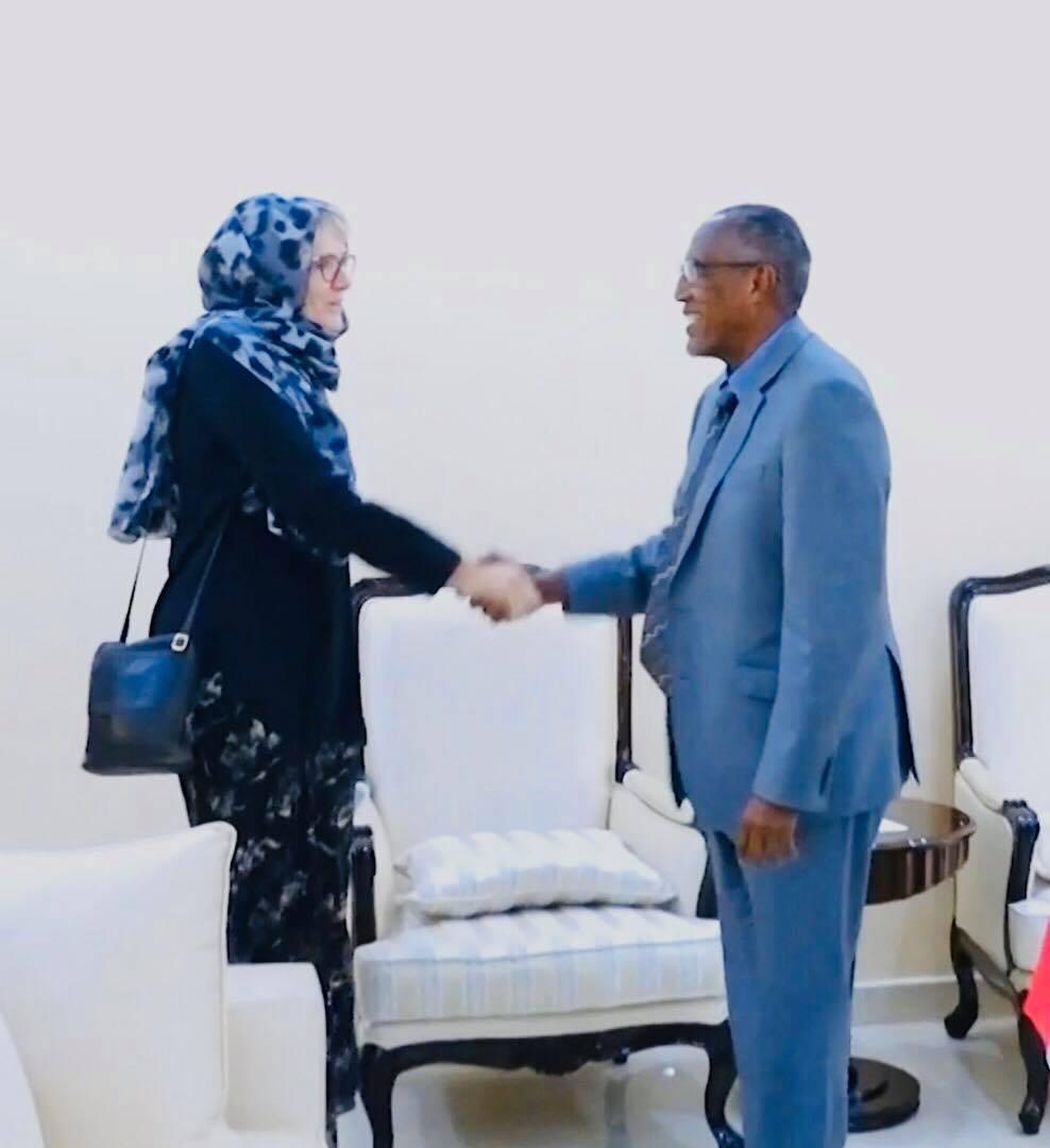 Madaxweynaha Somaliland Oo Qaabilay Wefti Ka Socda Denmark