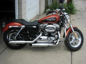 2011 Sportster 1200 Custom  Harley Davidson Forums