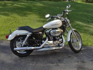 2004 Sportster 1200C  Harley Davidson Forums