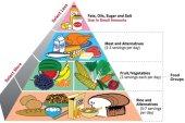 সুষম খাবার (Balanced Dite)