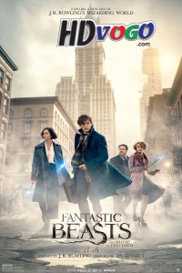 Fantastic Beasts and Where to Find Them 2016 in HD English Full Movie
