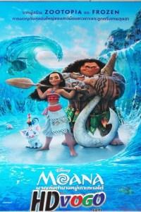 Moana 2016 in HD English Full Movie