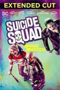 Suicide Squad (2016) Hindi Dubbed