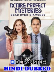 Picture Perfect Mysteries 2020 HD Hindi Dubbed