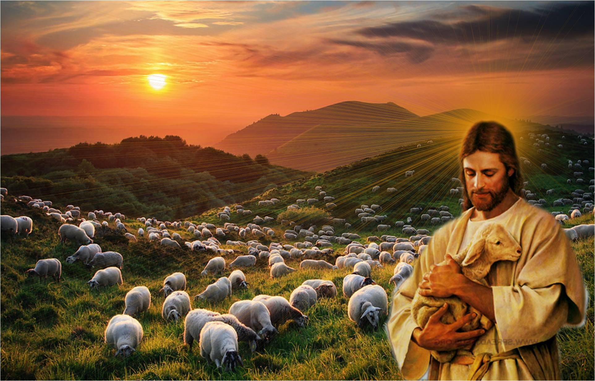 Image result for jesus christ shepherd