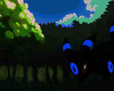 Umbreon in Ilex Forest