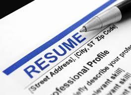 Resume writing services york pa
