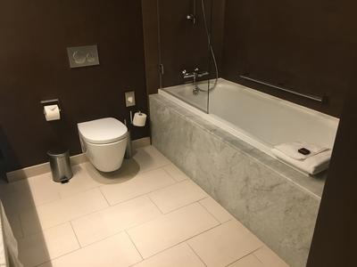 Crowne Plaza Geneva review bathroom 3