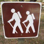 Hiking Headlamp Reviews