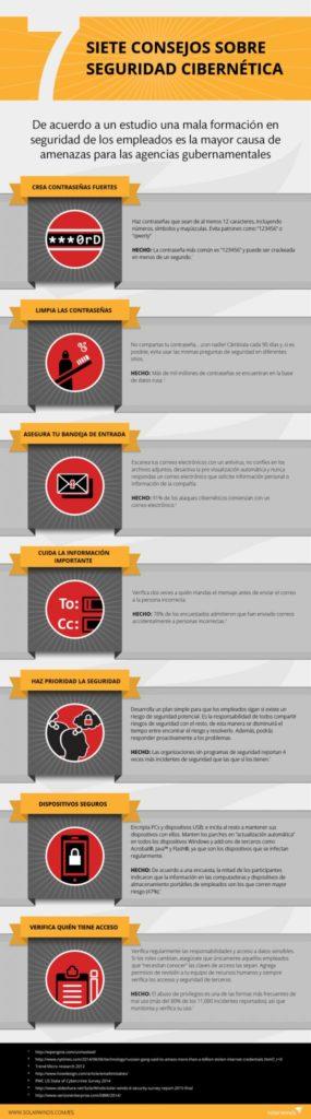 Seguridad cibernética infografía