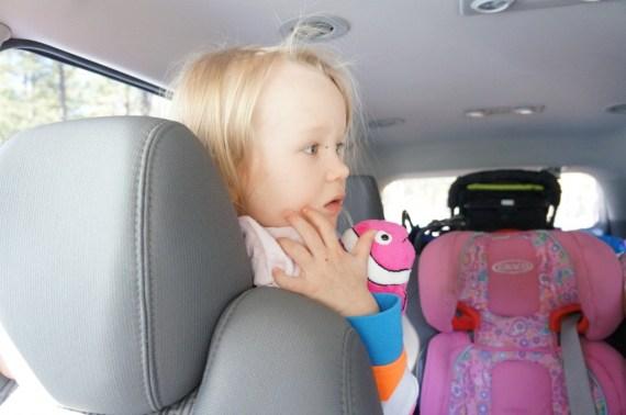 Bianca ihastelee eläimiä autokierroksella.