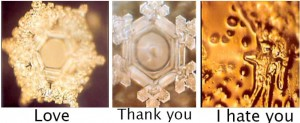 Dr Emoto Water Crystals