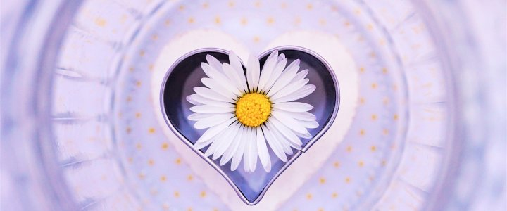 The answers to everything you ever wanted in life are… in your own beautiful heart. Learn to listen & hear.