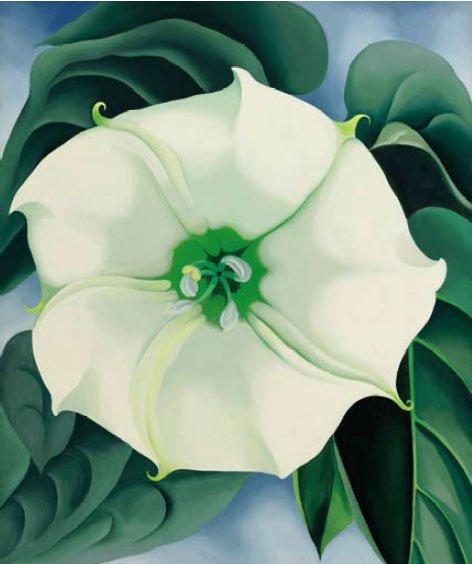 Georgia O'Keeffe, Jimson Weed/White Flower #1