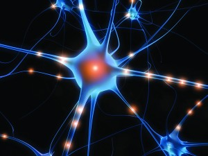brain-activity-neurons-signals