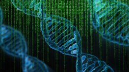 Reprogram our DNA